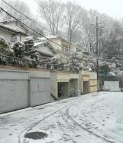 Kinjo