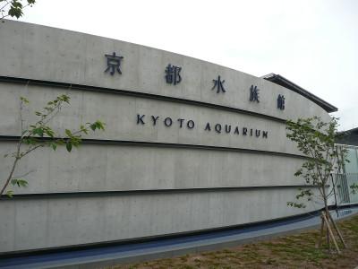 Kysuizoku_1